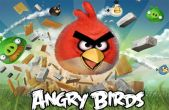 In addition to the game Fruit Ninja for iPhone, iPad or iPod, you can also download Angry Birds for free