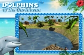 In addition to the game Real Football 2013 for iPhone, iPad or iPod, you can also download Dolphins of the Caribbean - Adventure of the Pirate's Treasure for free