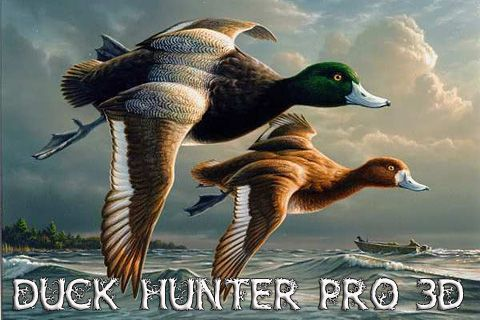 Download Duck hunter pro 3D iPhone free game.