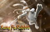 In addition to the game BMX Jam for iPhone, iPad or iPod, you can also download Kung Fu Rabbit for free