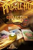 Download Pinball: Collection iPhone, iPod, iPad. Play Pinball: Collection for iPhone free.