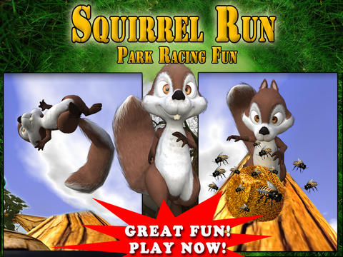 Download Squirrel Run iPhone free game.