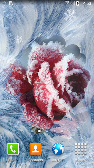 winter flowers live wallpaper for android winter flowers