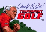 In addition to the sis game Ace Lightning for Symbian phones, you can also download Arnold Palmer tournament golf for free.