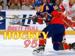 In addition to the sis game Need for speed: Shift HD for Symbian phones, you can also download Brett Hull hockey 95 for free.