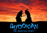 In addition to the sis game Bejeweled Twist for Symbian phones, you can also download Budokan: The martial spirit for free.