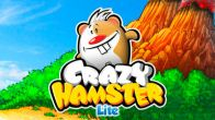 In addition to the sis game Sonic Advance 3 for Symbian phones, you can also download Crazy hamster for free.