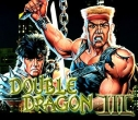 In addition to the sis game  for Symbian phones, you can also download Double dragon 3 for free.