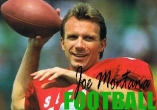 In addition to the sis game Fighters! 3D for Symbian phones, you can also download Joe Montana football for free.
